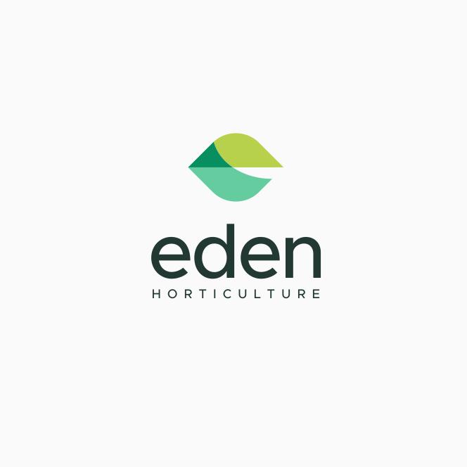 minimal leaf logo design