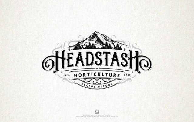 logo design for Headstash