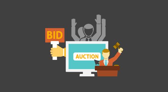 Make an auctions website