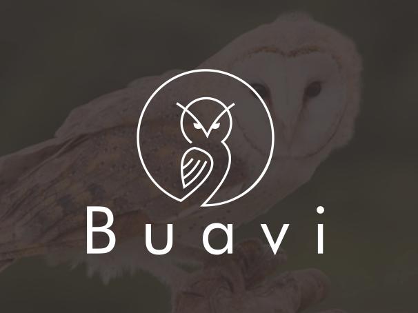 bad logo design of Buavi