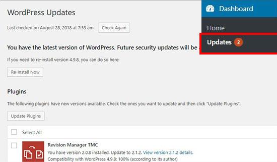 WordPress updates page